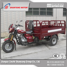 China Manufacturer Lifan Engine Motorcycle / Heavy Carry Truck For Sale