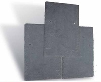 Best-Selling Thin Roofing Slate Tile in China