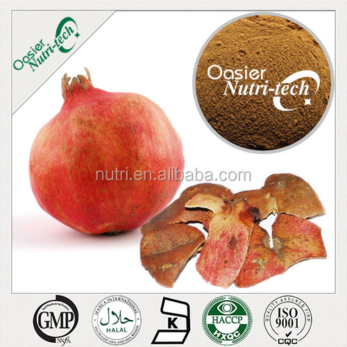 Pomegranate plant extract fruit powder/pomegranate extract for Antioxidant