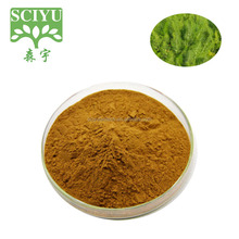 Anti-Virus Product Star Anise Fruit Extract Anise Extract Powder 10:1 20:1
