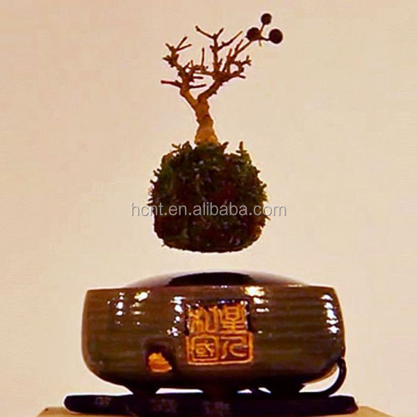 Levitating plastic bonsai pots wholesale bonsai table with kit