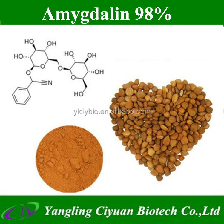 Pure natural Almond seed extract powder amygdalin 98%