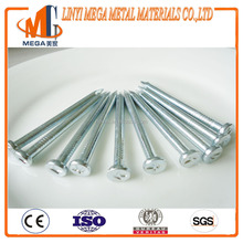 K word head Building Construction steel concrete nail Electro Galvanized diamond point
