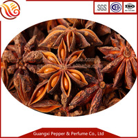 Chinese Curry spices star anise for five spices powder