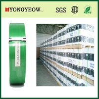 machine grade green embossed 1206 polyester plastic strapping