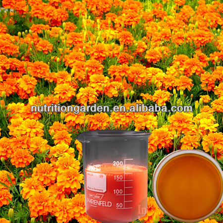 Marigold flower extract zeaxanthin oil 5%-20% by HPLC