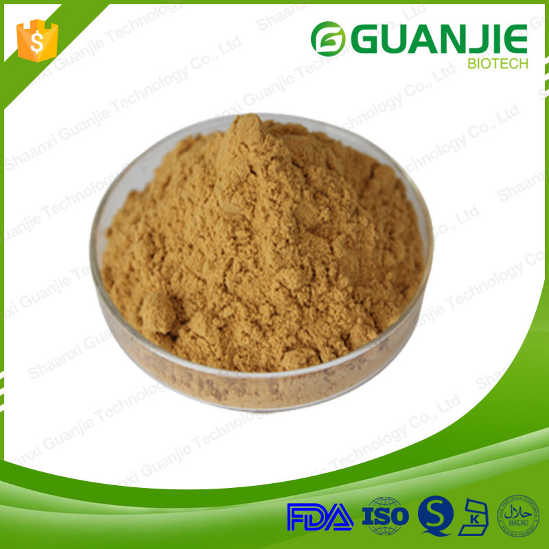 Hot Sell Black Cohosh Extract of Bottom Price