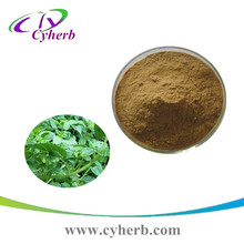 Purity Mesona Chinensis extract/ Grass jelly Leaves Extract powder 10:1