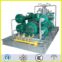 DW-8.3/(2.5~5)-30 D type oil free Natural gas compressor