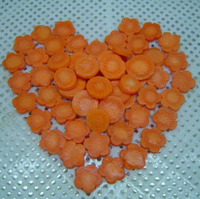Frozen carrot dice/slice good quality orange Four Season Foods China exporting