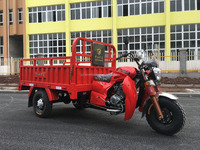 Hot selling 250cc LIfan engine van cargo tricycle for sale