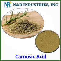 Nature food supplements Carnosic acid from rosemary extract/3650-09-7