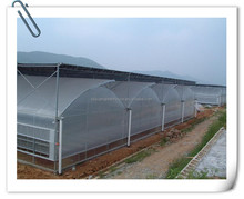[Manufacturer] Large size multi-span film green house for agriculture supplied by greenhouse manufacture