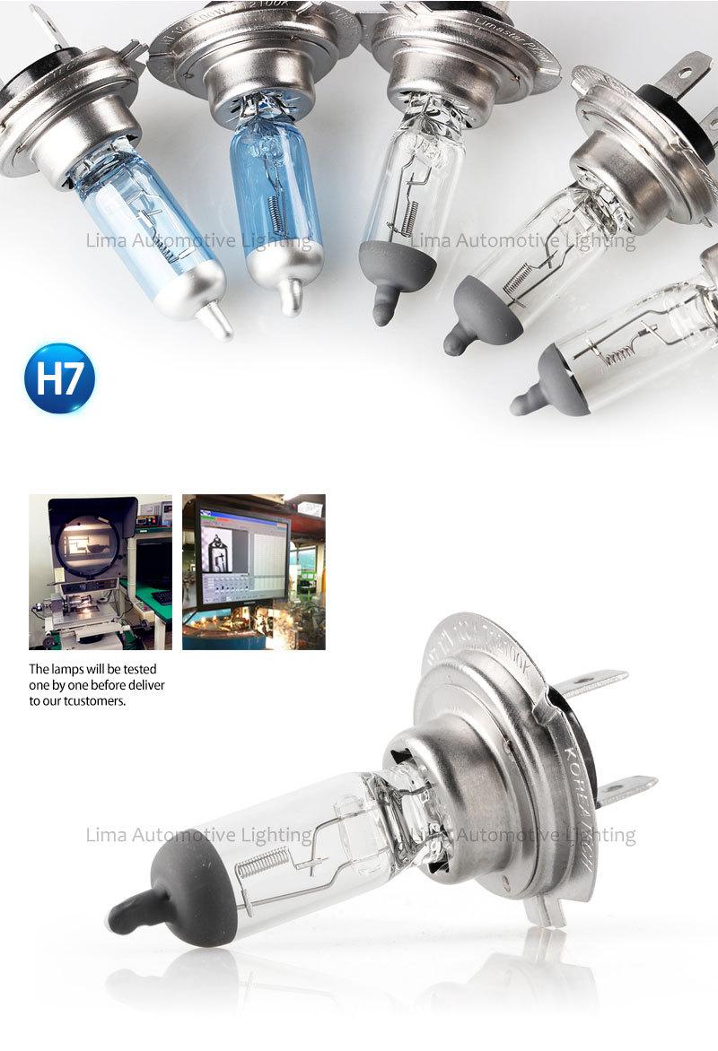 Best Quality Car Halogen Bulb H1 H3 H4 H7 9005 9006 H3