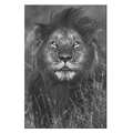 Custom Canvas Art Animal Photo Printing on Canvas Home Decoration Black And White Lion Picture Room Decor