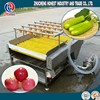 CE certificated fruit and vegetable washer/washing/cleaning machine
