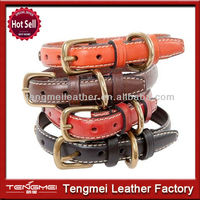 2014 China hot selling new pet product elastic dog collars