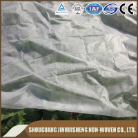 [FACTORY]Eco-friendly PP spunbond nonwoven fabric /Vegetation cover/plant protection fleece