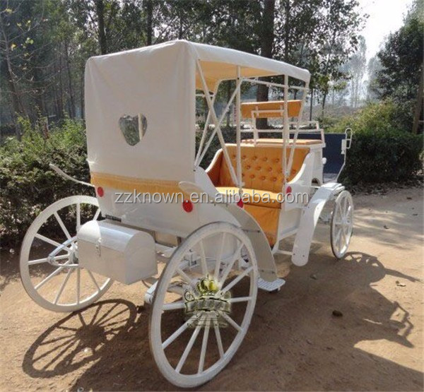 Sightseeing horse carriage/horse wagon tourist carriage
