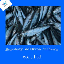 china frozen anchovy grouper fish