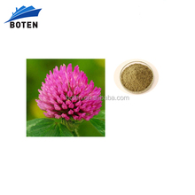 Supplying red clover flower extract 40% isoflavones
