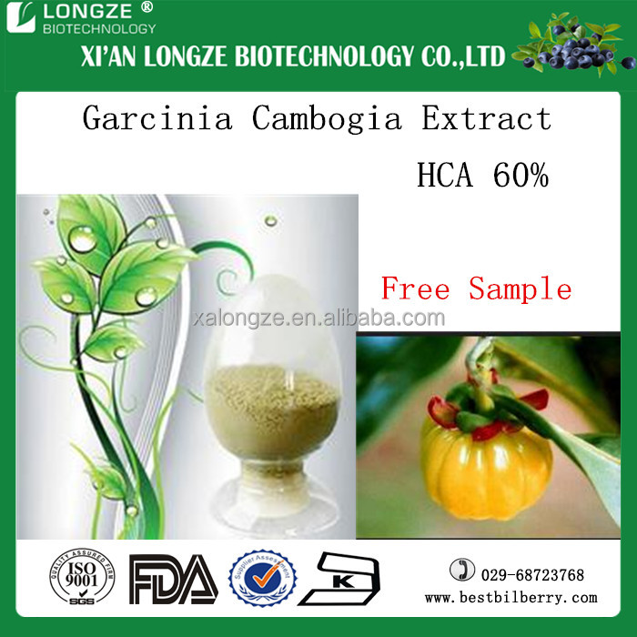 High quality of hydroxycitric acid from garcinia cambogia fruit in competitive price for wholesale