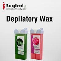 Direct Supplirt Aloe Depilatory Wax Kit for Hair Removal with Wax Heater