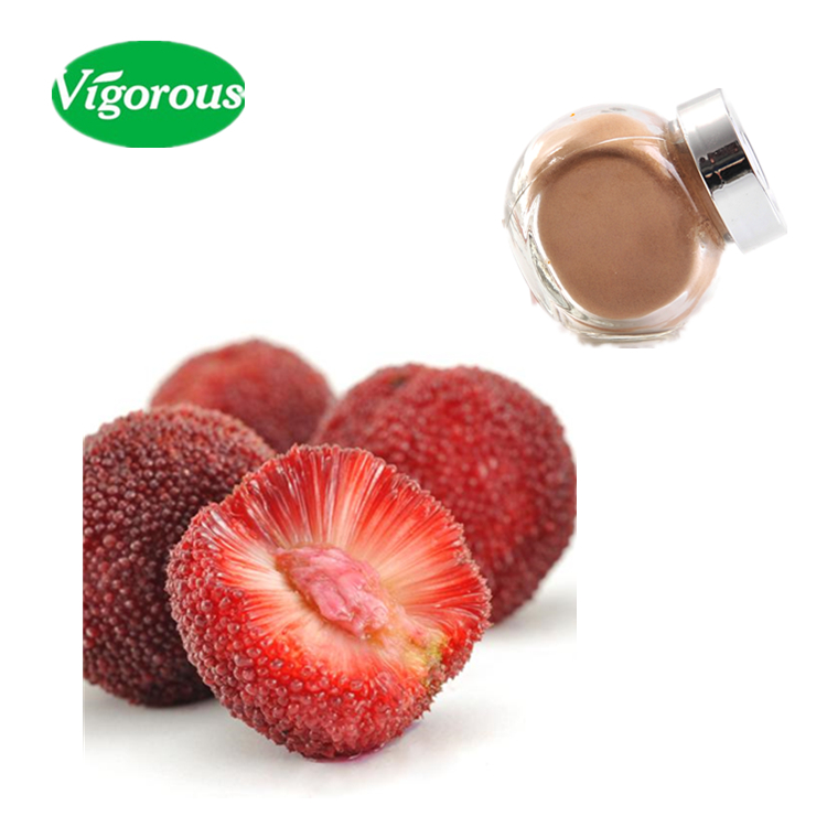 ISO facotry pure red bayberry natural Myrica Rubra Extract Powder