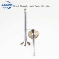 Chinese auto spare parts Auto engine intake and exhaust valves for CG125