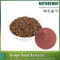 100% Natural Black grape seed powder 95% Proanthocyanidins grape seed extract powder