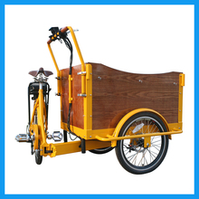 Front Load Fold Family 7 Speeds Electric Tricycle Cargo for Sale