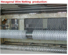 50*200mm (Manufacturer) Galvanized/PVC coated Hexagonal Wire Mesh /Livestock Wire Netting