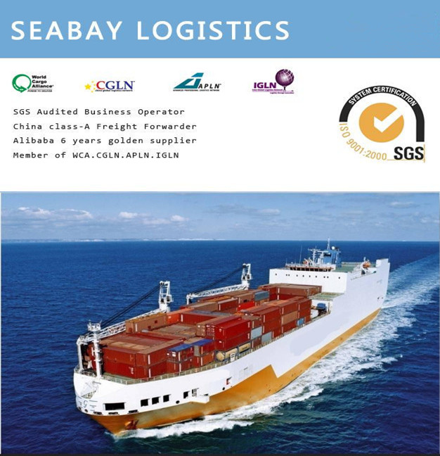 professional ocean freight from foshan to NEW DELHI