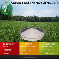 Stevia Leaf Extract Made In China/High Quality Stevioside/Stevia Leaf Extract 40%-98%