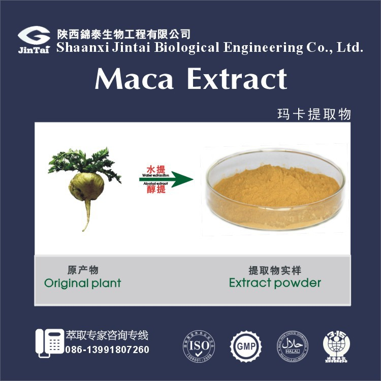regulates mood and energy organic maca root 4:1 10:1 20:1