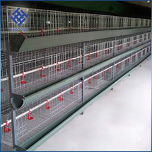 Factory Layer battery Poultry equipment Galvanized Hot salecages laying hensbird cage chicken wire mesh