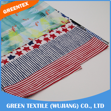 DW43 China Manufacture Best selling printed taslan fabric