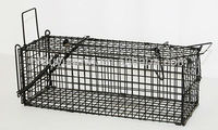 animal transport cage
