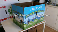 fruit and vegetables packing material