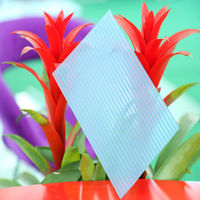 6mm uv crystal multiwall plasitc polycarbonate sheet