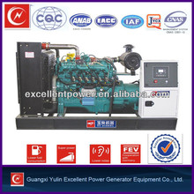 Chinese new bio gas generator