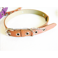 Sliding Letters Dog Collar,Reflective dog collar,High Quatily Pet Products blank dog collars,