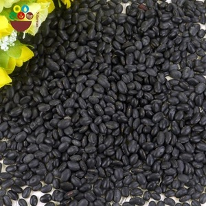 healthy high quality black kidney beans with nice price
