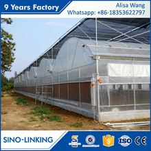 SINOLINKING high strength poly tunnel greenhouse for seeding