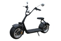 Best selling citycoco New arriver motorbike e city scooter