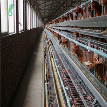 export chicken farm automatic poultry animal cages