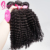 Remi And Virgin Kinky Curly 20 22 24 Inch Weave Bundle With Closure Human Hair Exports For Afro Hairdressers
