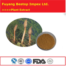 Mu zei cao Raw material herbal extract Horsetail Dry Extract