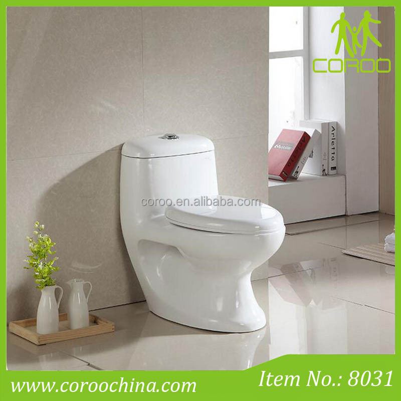 Integrated egypt toilet with bidet function,floor mounted muslim toilet with built in bidet