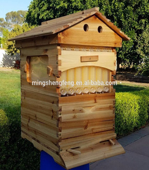 2018 Chinese flow hive factory directly supplies Australia automatic bee hive and auto honey flow hive for bees